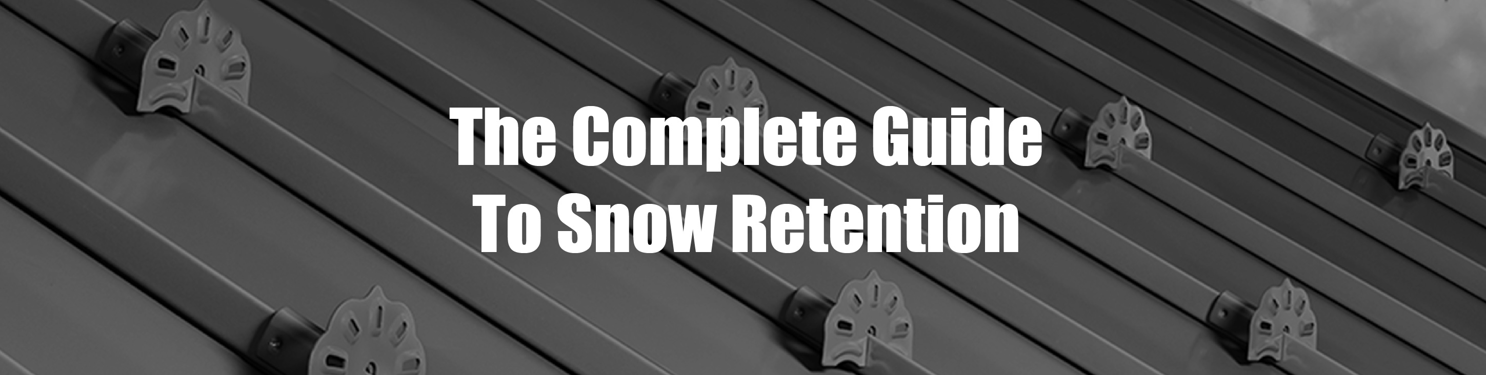 Complete guide to snow retention header image-01
